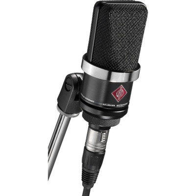 the best studio recording microphones NEUMANN TLM 102 MT